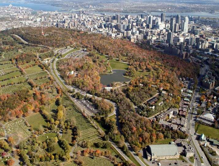 la-construction-sur-le-mont-royal/mont-royal-vue-345-jpg.jpeg