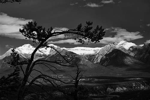 deces-ansel-adams/ansel-easton-adams132-jpg.jpeg