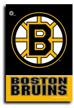 sports-une-franchise-est-accordee-aux-bruins-de-boston/boston-bruins-b6-jpg.jpeg