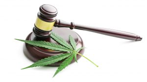 legalisation-du-cannabis/cannabis-legal-300x169-jpg.jpeg
