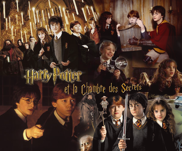 premiere-du-film-harry-potter-and-the-chamber-of-secrets/image021-png.png