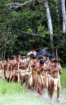 decouverte-de-la-tribu-metyktire/kayapo171320.jpg