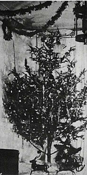 le-premier-arbre-de-noel-illumine/first-electric-tree10.jpg