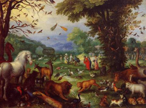 deces-jan-bruegel/bruegel8.jpg