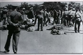 apartheid-massacre-a-sharpeville/sharpeville-massacre2450.jpg